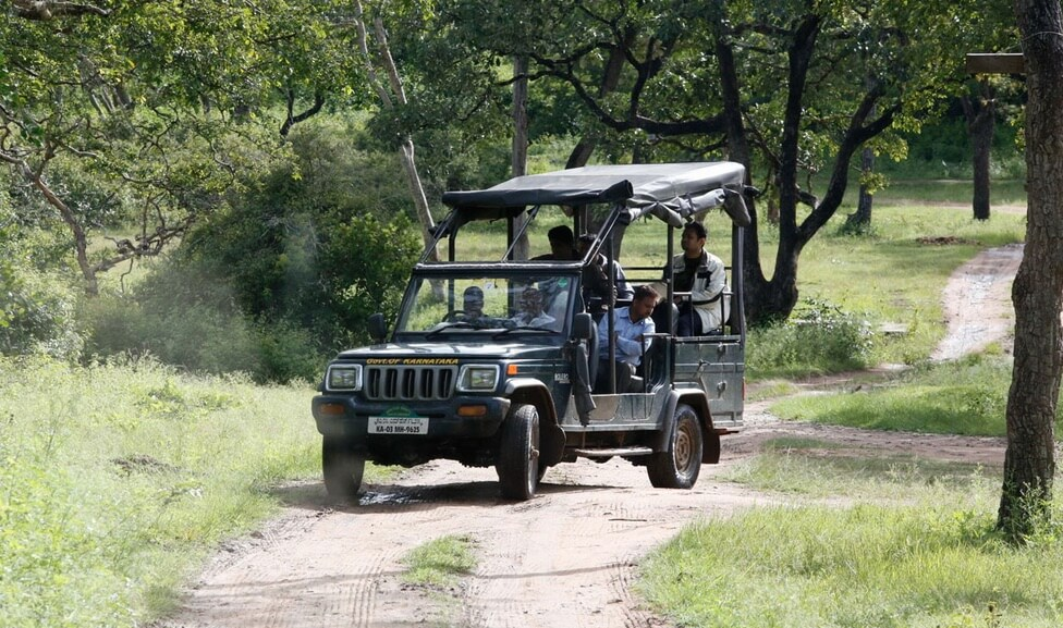 2015 Jeep Wrangler Inside >> What you must know about Jeep Safari in Bandipur & Nagarhole (Kabini & Coorg)? - WildTrails ...