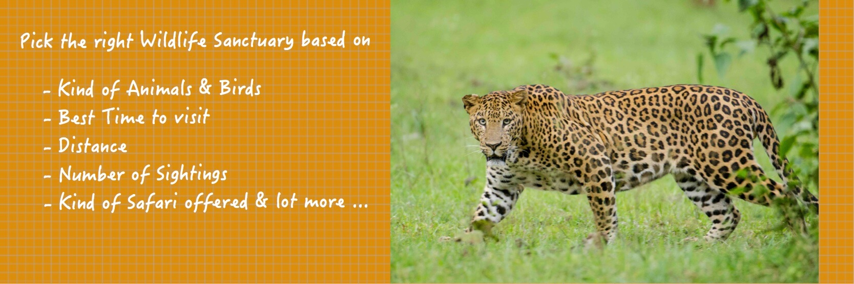 The WildTrails of India app is the best way to get all the details about Indian wildlife sanctuaries (best travel times, animal sightings, accommodations, prices, etc).