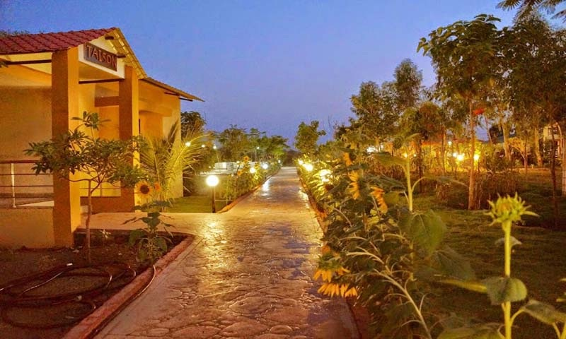Top 5 Luxury Resorts Tadoba