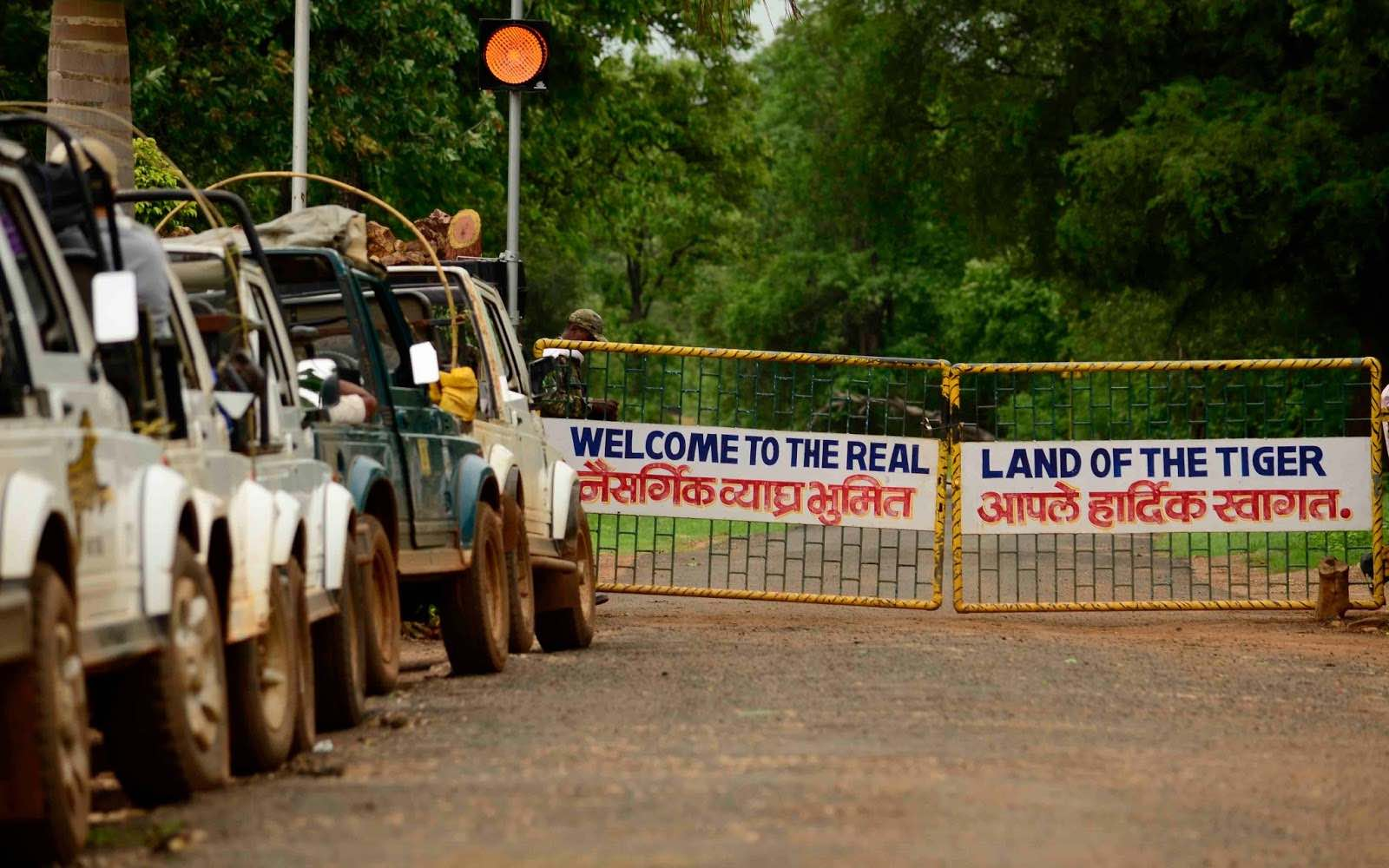 locate tadoba safari gates