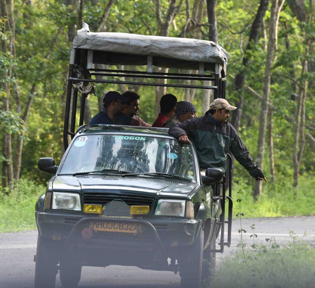 kabini jungle safari open jeep