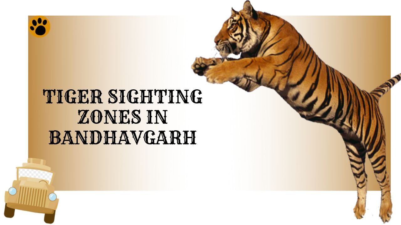 Bandhavgarh Tiger Sighting Zones